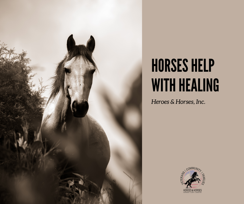 Horses Help with Healing